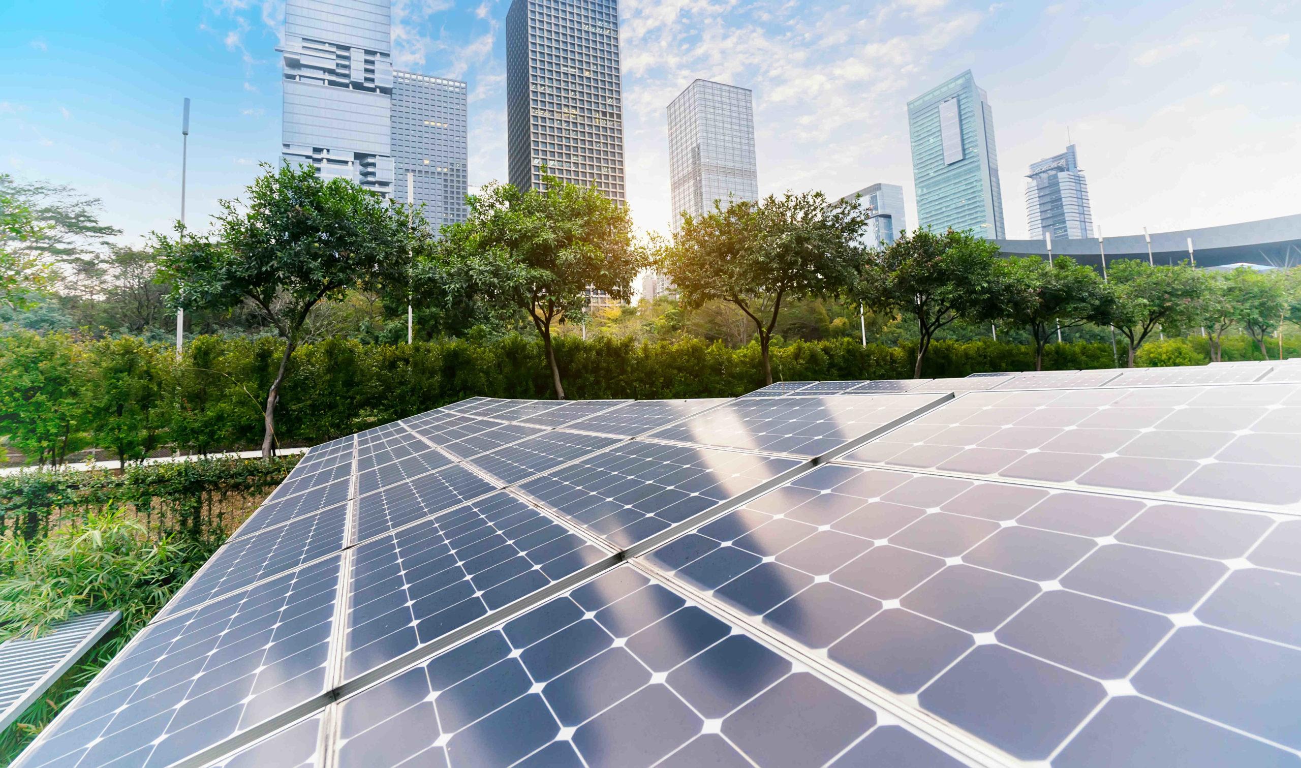 How do I stop Momentum Solar calls?